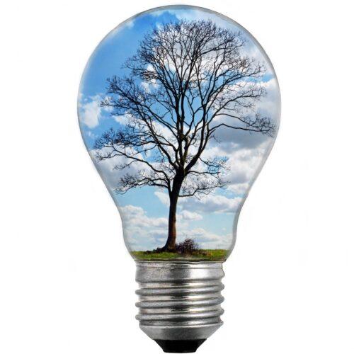 Lavoro, innovazione, investimento: si può affrontare la precarietà?