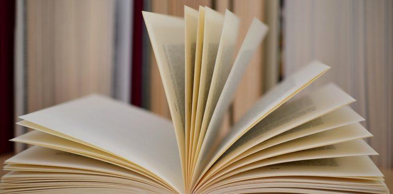 Rassegna bibliografica 4049