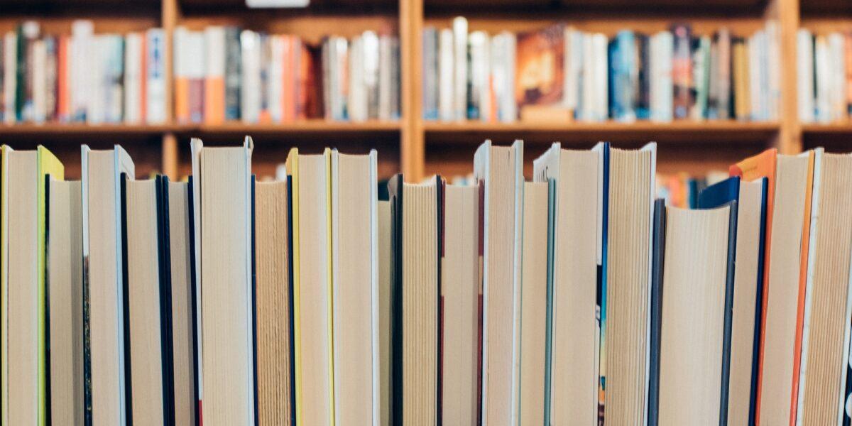 Rassegna bibliografica 4025