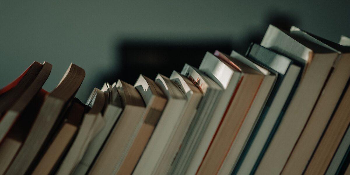 Rassegna bibliografica 4027
