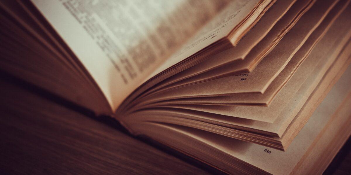 Rassegna bibliografica 4028