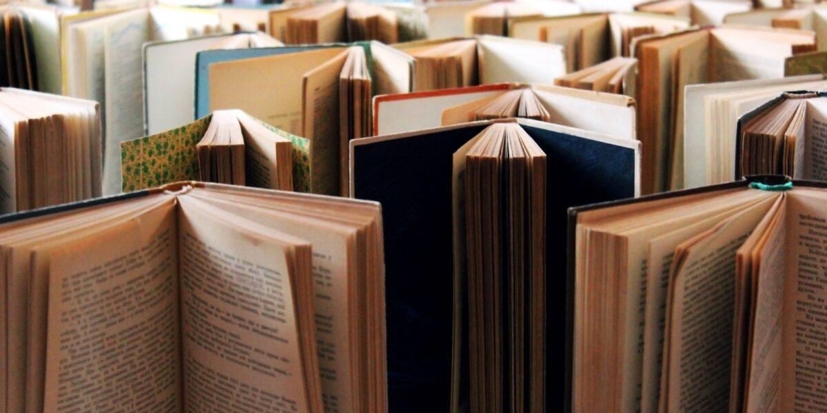 Rassegna bibliografica 4095