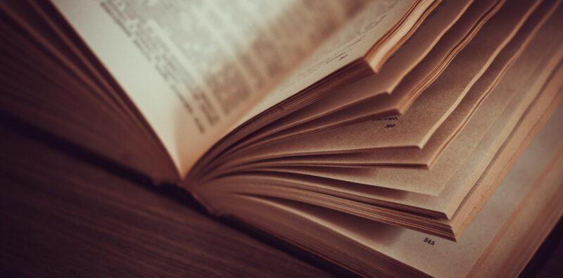 Rassegna bibliografica 4033