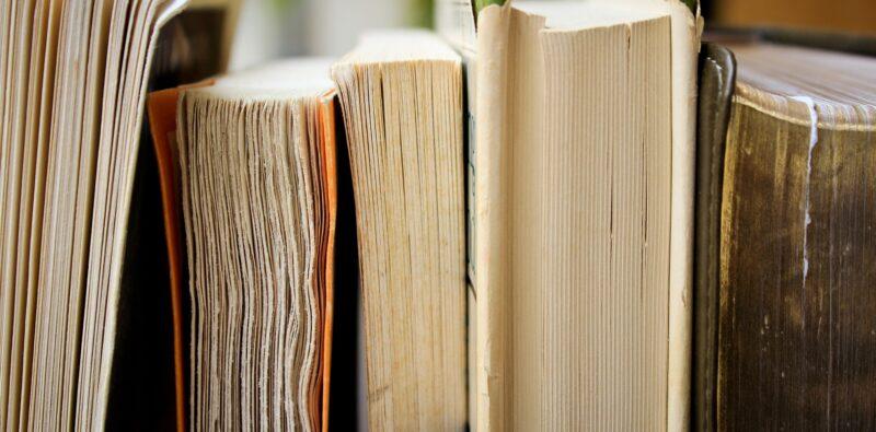 Rassegna bibliografica 4086
