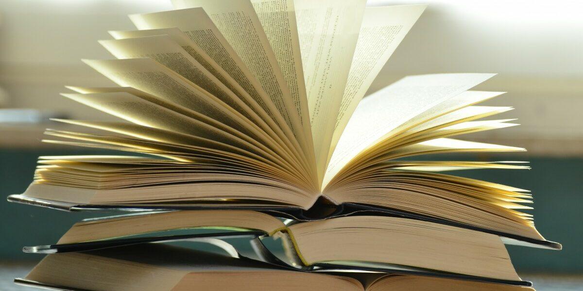 Rassegna bibliografica 4092