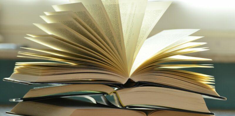 Rassegna bibliografica 4042
