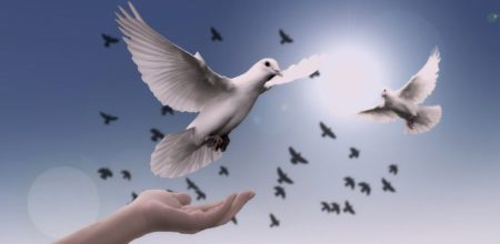 La nonviolenza stile di una nuova politica per la pace