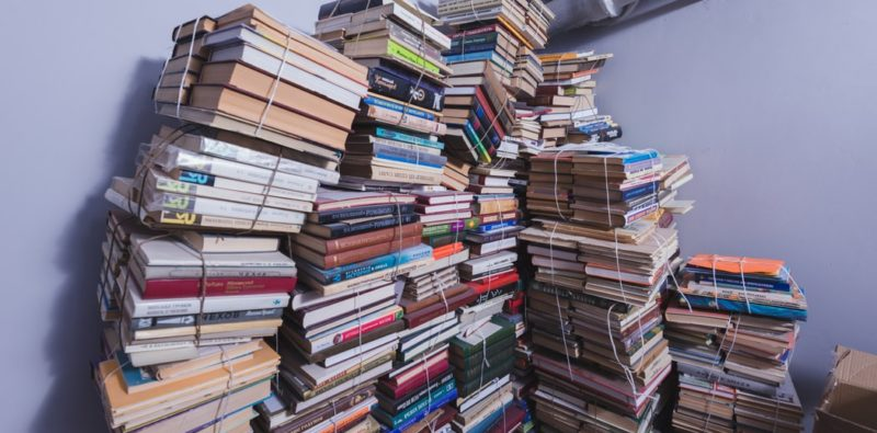 Rassegna bibliografica 4088