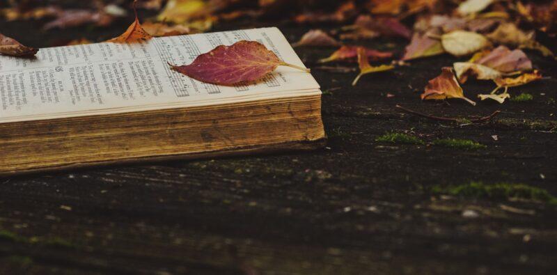 Gesuiti e poesia