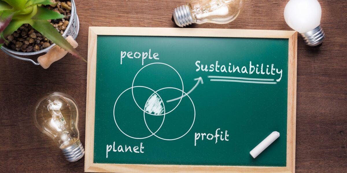 Sarà possibile uno sviluppo verde per tutti?