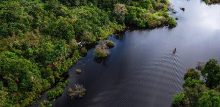 «Querida Amazonia», fra racconto e metafora